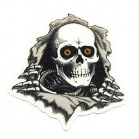 Textile patch POWELL PERALTA 20cm x 20cm